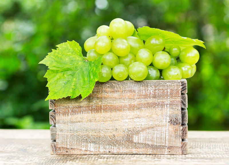Green grape in the wooden box royalty free stock photos