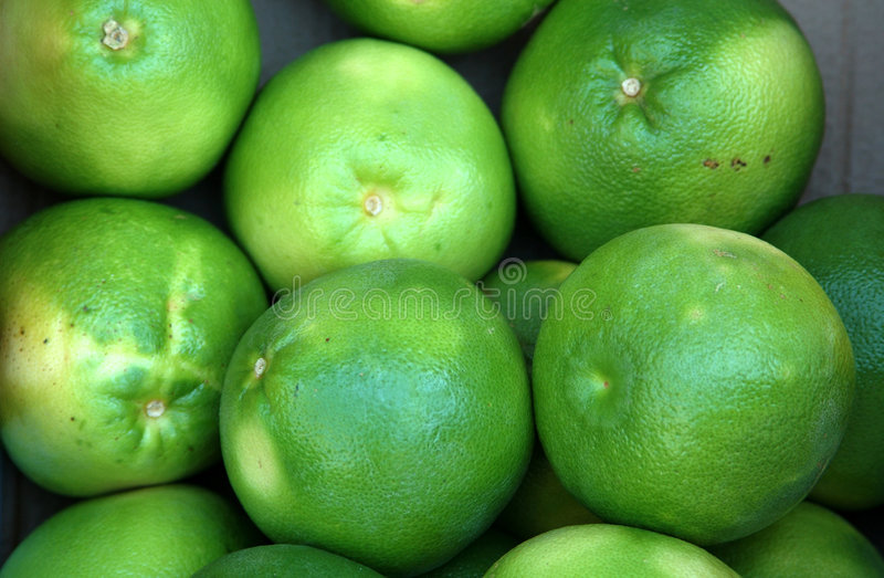 Green grapefruit stock images