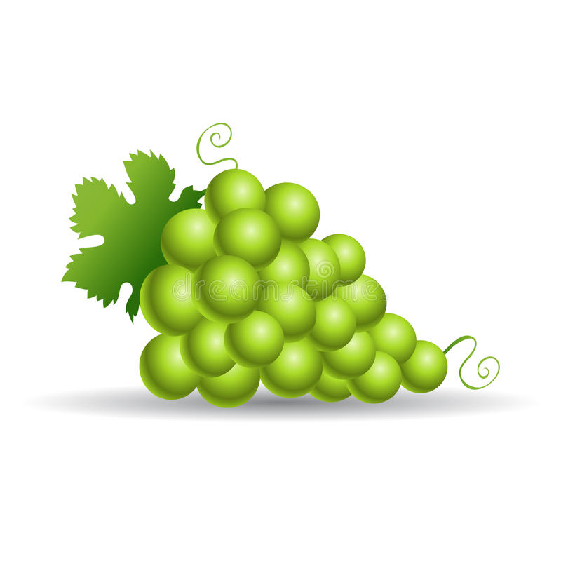 Free Green Grapes Stock Photo - 14978290