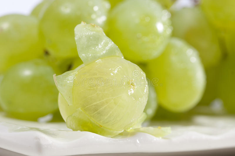 Download Green grapes stock photo. Image of tasty, juicy, nature - 26064044