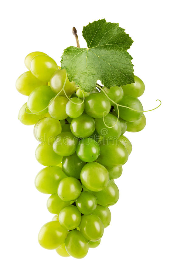 Green grapes isolated on the white background stock photos