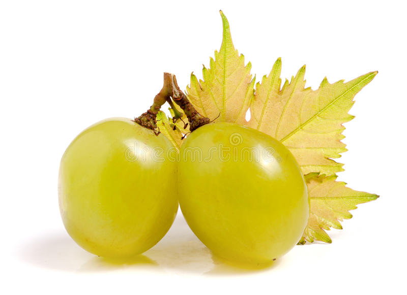 Green grapes with leaf isolated on white background royalty free stock photography