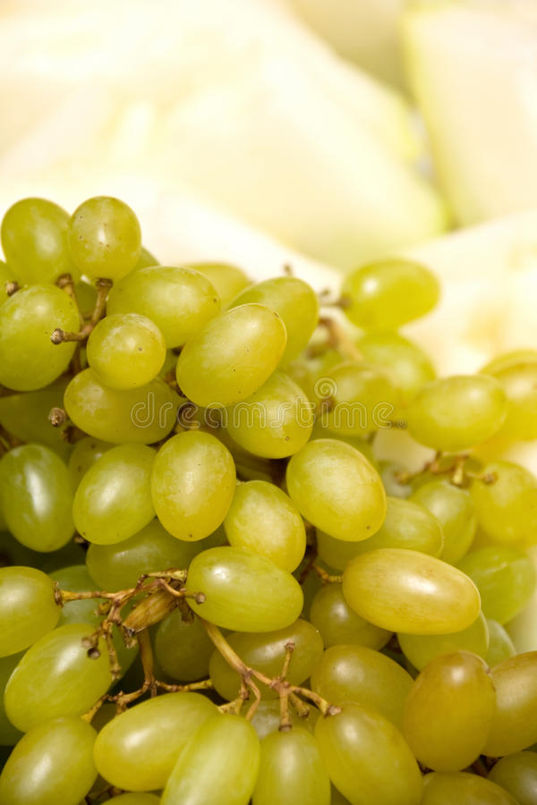 Download Green Grapes and Melon stock image. Image of juicy, ripe - 11013843