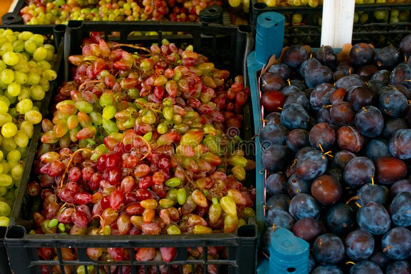 Green grapes and plums in plastic boxes. Fruit in the crates. stock photo
