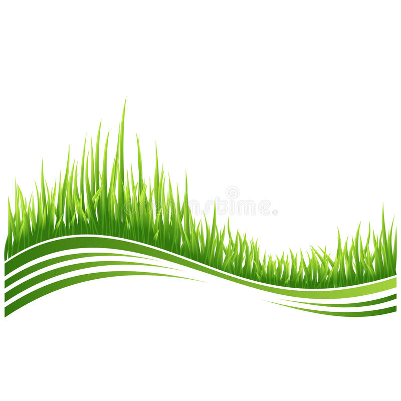 Download Green Grass Stock Photography - Image: 15843252
