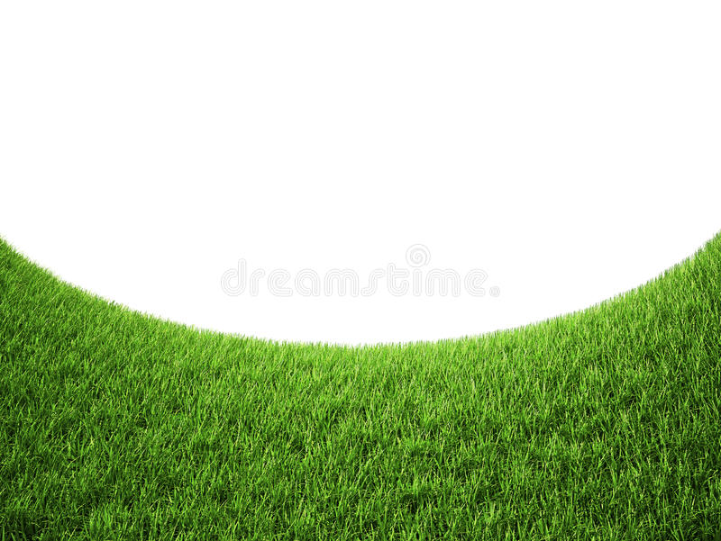 Download Green grass stock illustration. Image of green, nature - 20382572