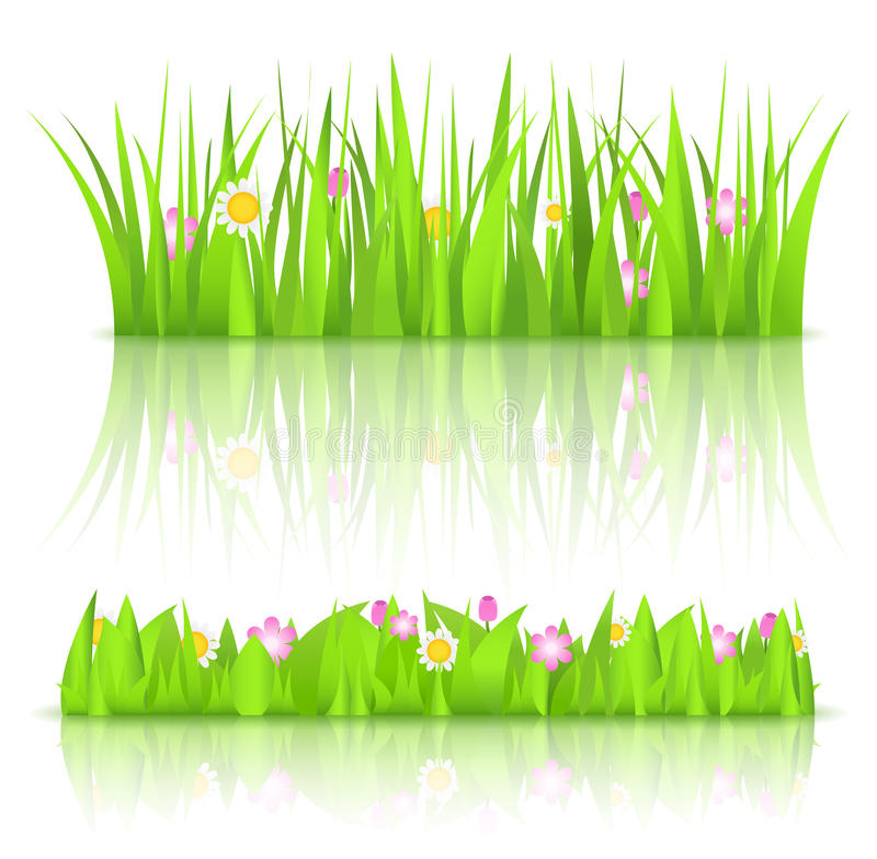 Download Green grass stock vector. Image of outdoors, grass, bunch - 24069395