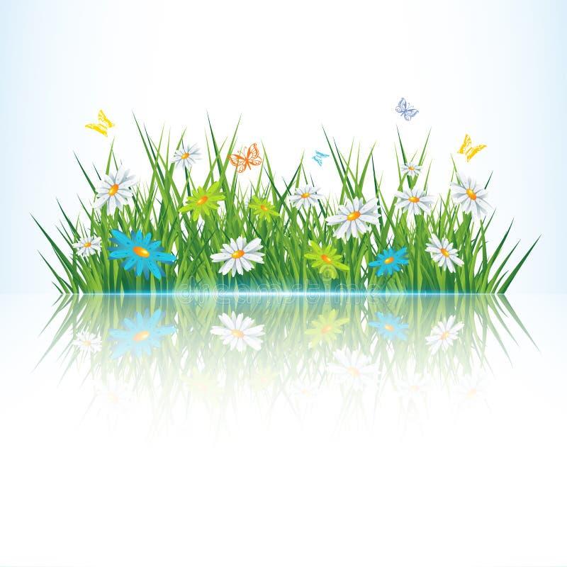Download Green grass stock vector. Illustration of garden, herbal - 24523667
