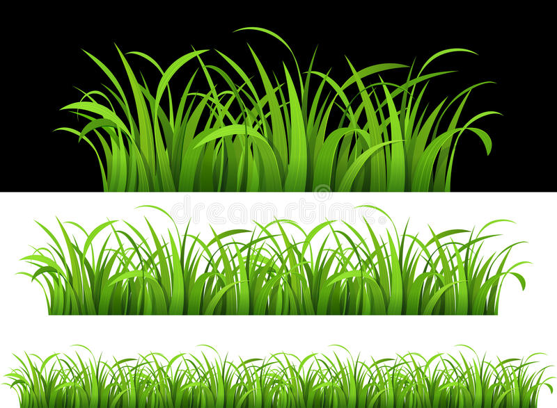 Download Green grass stock vector. Image of bright, abstract, beautiful - 26091125