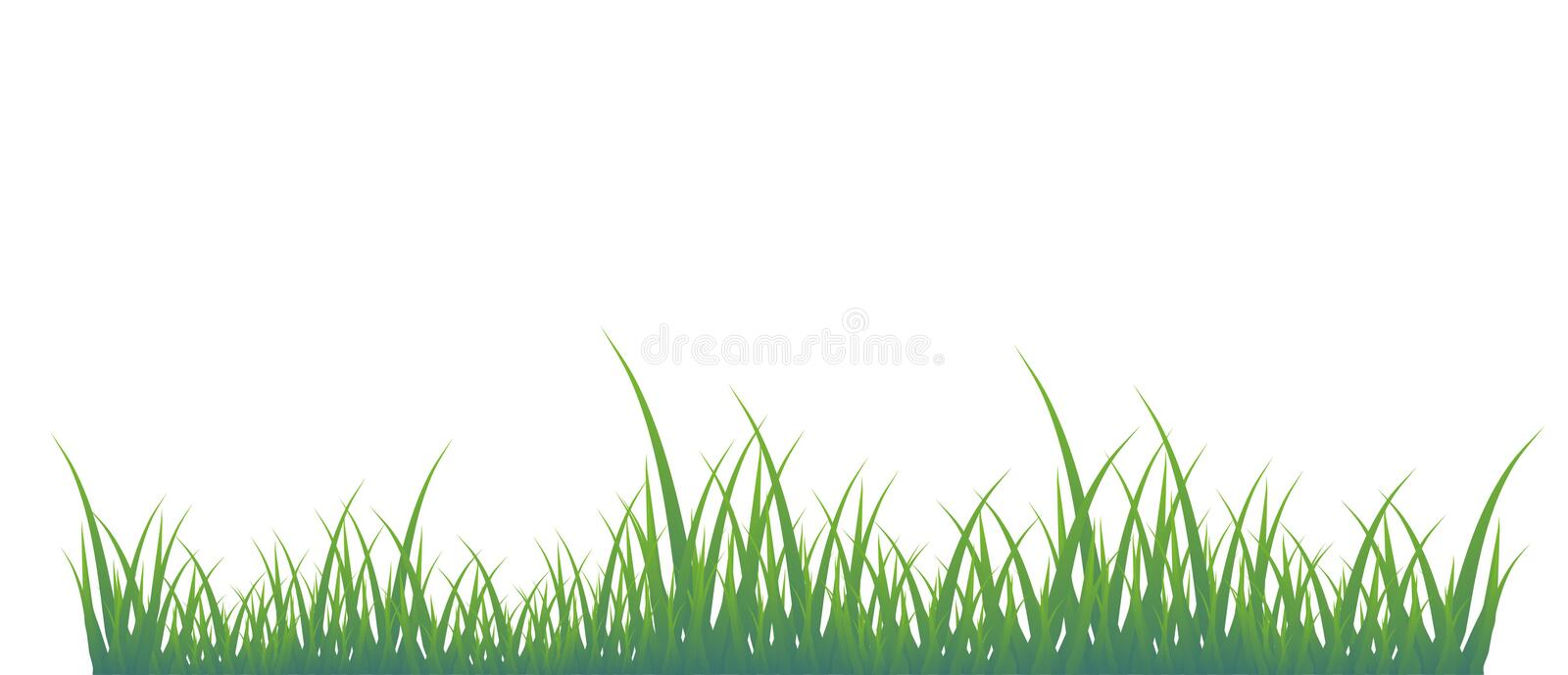 Green grass royalty free illustration