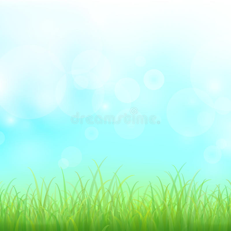 Free Green Grass Royalty Free Stock Photography - 38888487