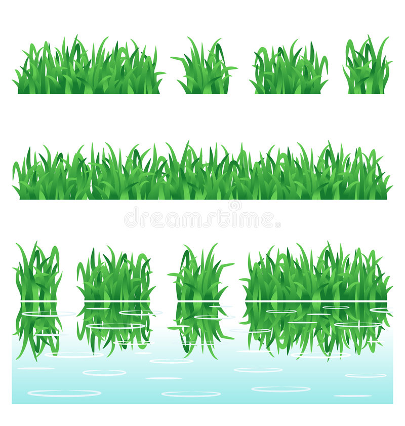 Download Green grass stock vector. Image of field, elements, design - 8662594