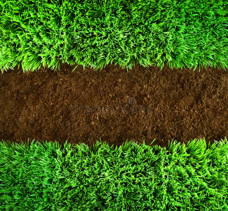 Free Green Grass And Earth Background Royalty Free Stock Image - 13794126