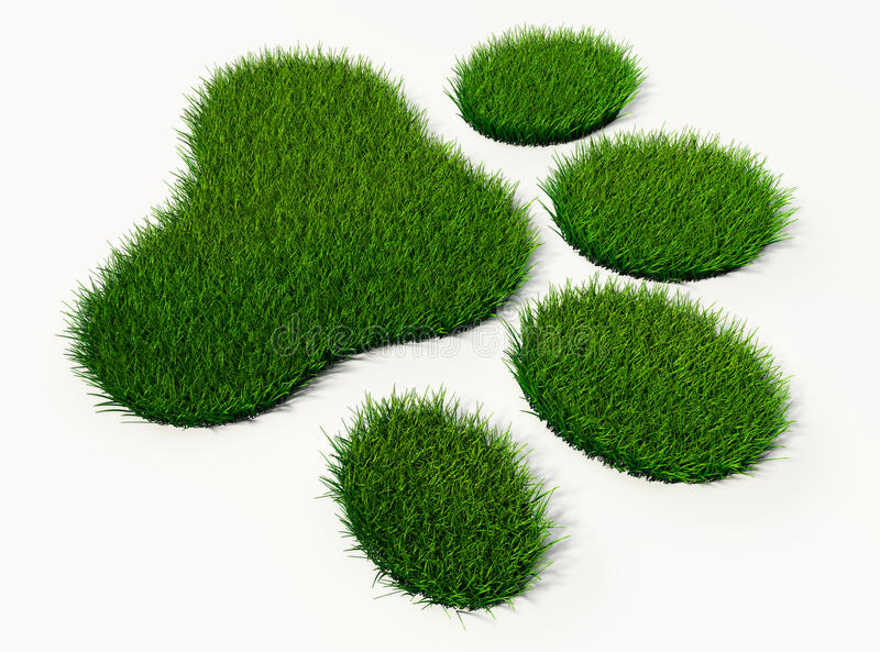 Download Green Grass Animal Footprint Stock Illustration - Image: 41427236