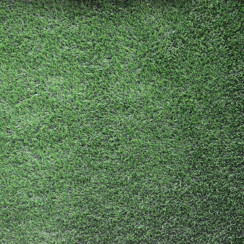 Green grass background, green lawn pattern textured background stock images