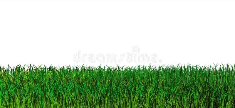 Download Green Grass Background. Nature Stock Illustration - Illustration: 4347554
