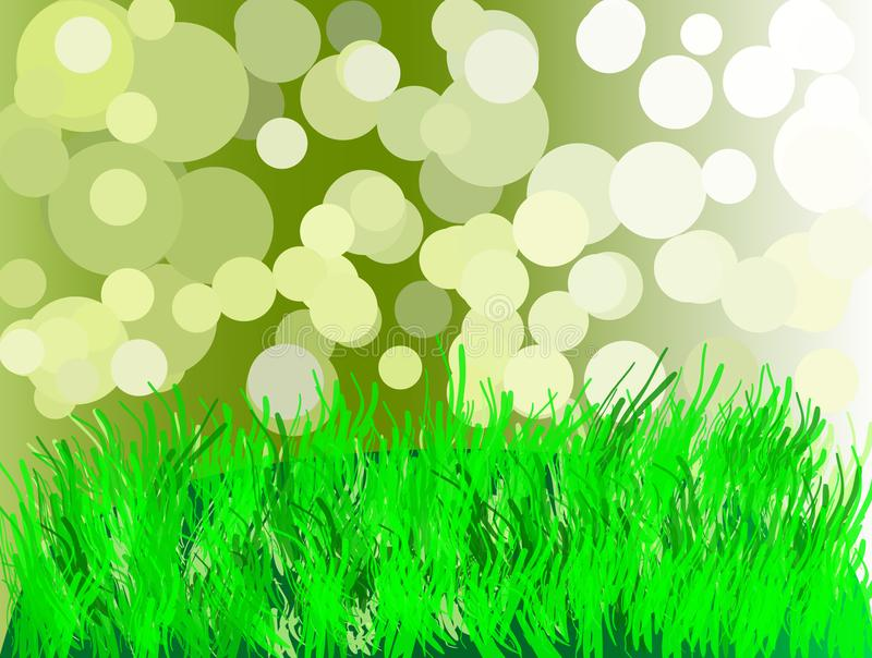 Green grass on the background of the rays are translucent. Vector illustration. royalty free illustration
