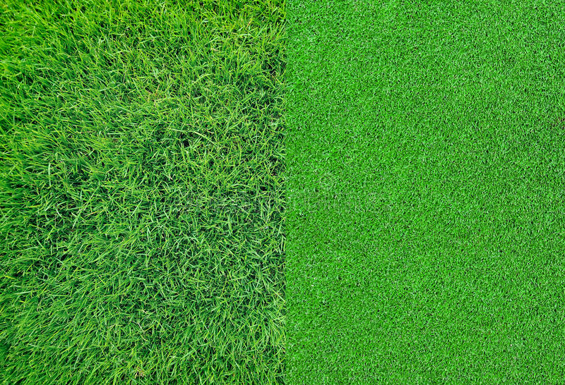 Download Green Grass Background Texture Stock Image - Image of color, turf: 39512469