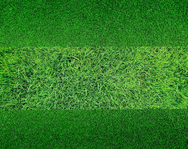 Download Green Grass Background Texture Stock Image - Image of meadow, pattern: 39513135