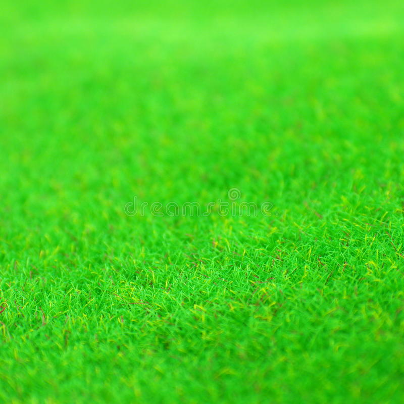 Green Grass Background Texture stock images