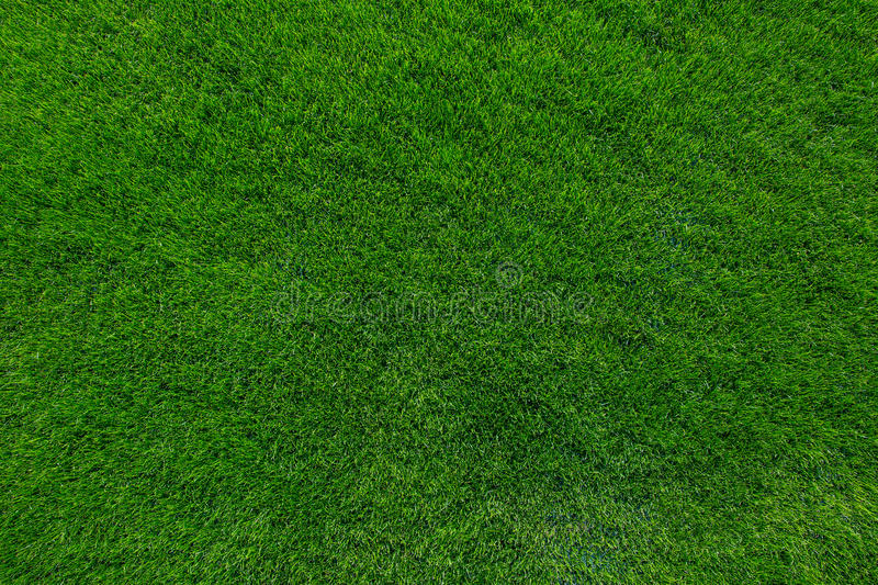 grass background. download green grass background texture stock photo image 48645436