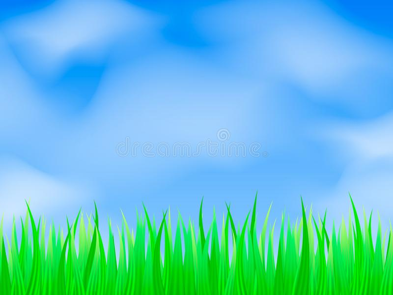 Green grass background. Vector illustration for poster stock photo