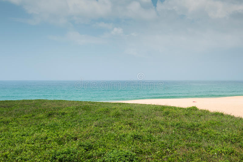 Download Green grass with beach stock photo. Image of land, nature - 30941366