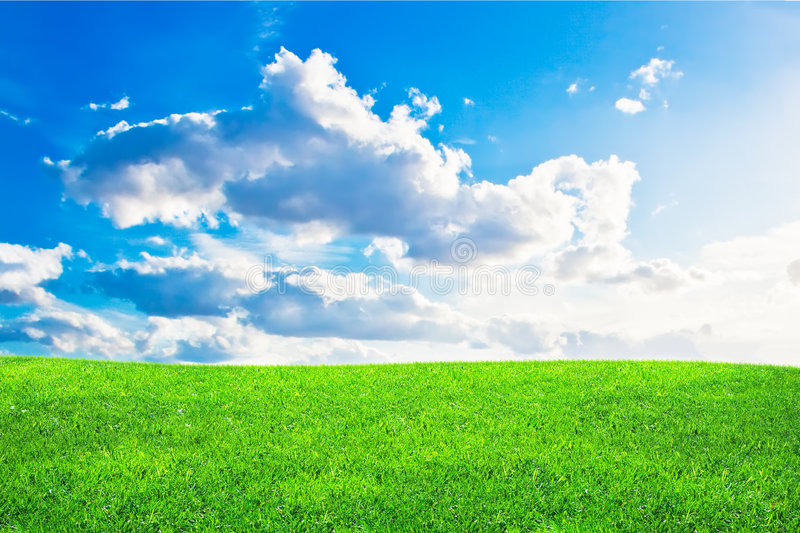 Green grass and blue cloudy sky royalty free stock photography