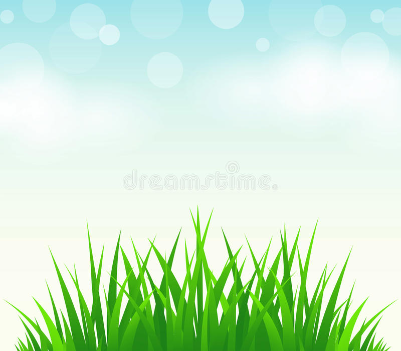 Green grass,blue sky