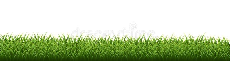 Green grass border set on white background. Vector Illustration royalty free illustration