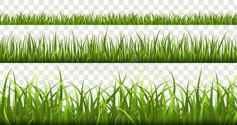 Green grass borders. Football field, summer meadow green nature, panorama herbs spring macro elements, lawn grass. Green grass borders. Football field, summer royalty free illustration