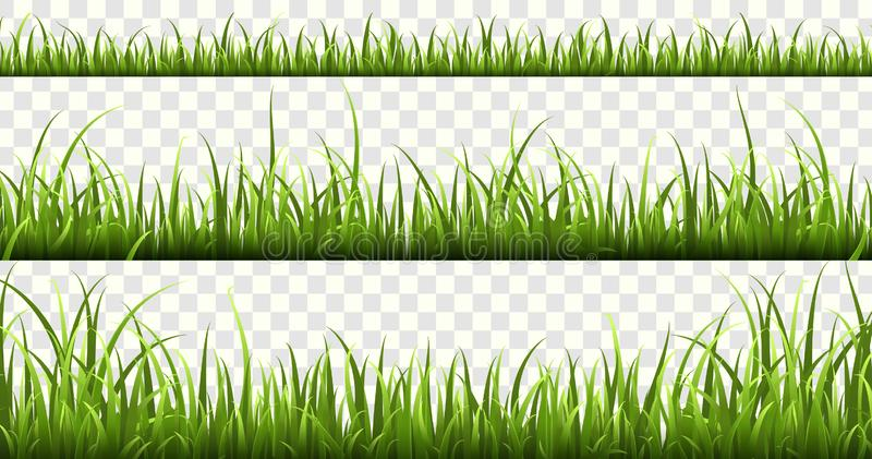 Green grass borders. Summer meadow green panorama nature herbs spring elements lawn grass isolated vector set. Green grass borders. Summer meadow green panorama vector illustration