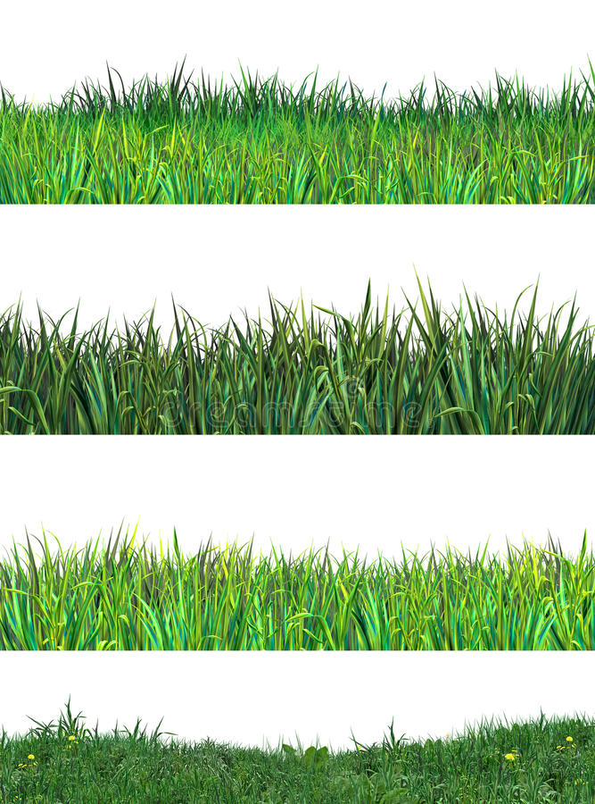 Download Green Grass Clip Art Stock Photo - Image: 67006572