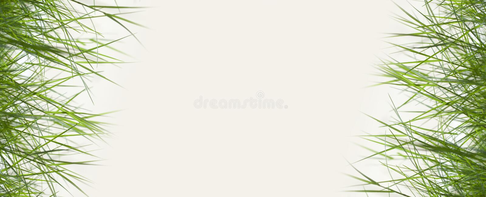 Download Green Grass With Copy Space,material For Designer Stock Image - Image: 34154697