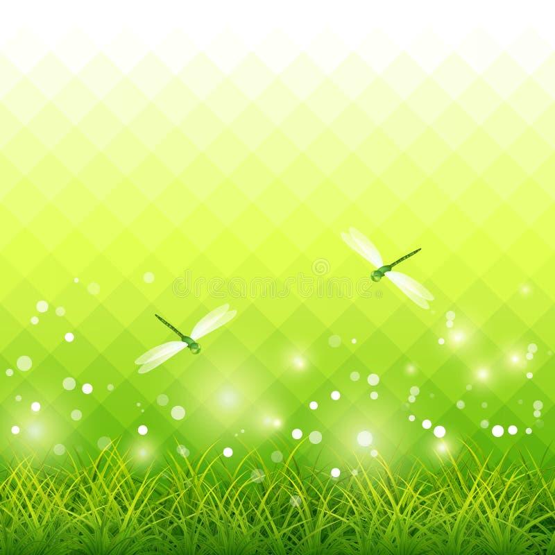 Green Grass Dragonfly Season Background Vector Stock Vector
