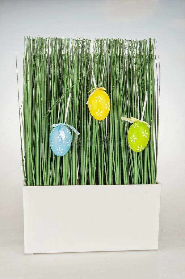 Green grass Easter eggs stock photo