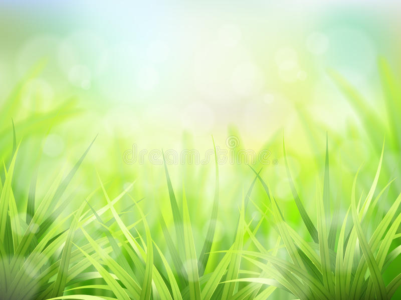 Green grass and effect bokeh stock illustration