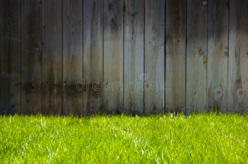 Green Grass and Fence stock photos