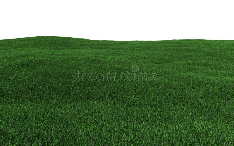Green grass field. 3d render vector illustration