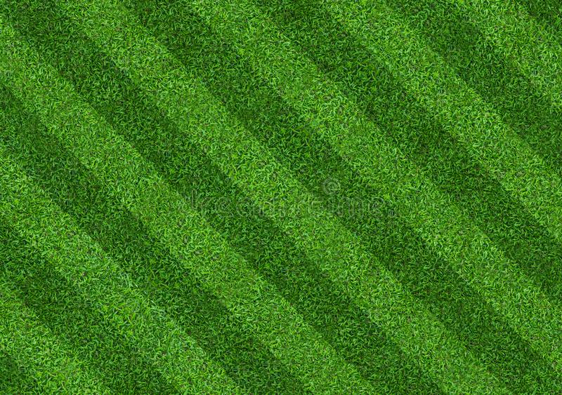 Green grass field background for soccer and football sports. Green lawn pattern and texture background. Close-up. Image royalty free stock photos