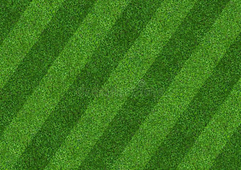 Green grass field background for soccer and football sports. Green lawn pattern and texture background. Close-up. Image stock photo