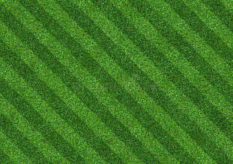 Green grass field background for soccer and football sports. Green lawn pattern and texture background. Close-up. Image royalty free stock photography