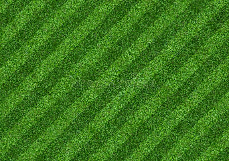 Green grass field background for soccer and football sports. Green lawn pattern and texture background. Close-up. Image royalty free stock images