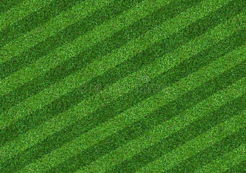 Green grass field background for soccer and football sports. Green lawn pattern and texture background. Close-up. Image stock images