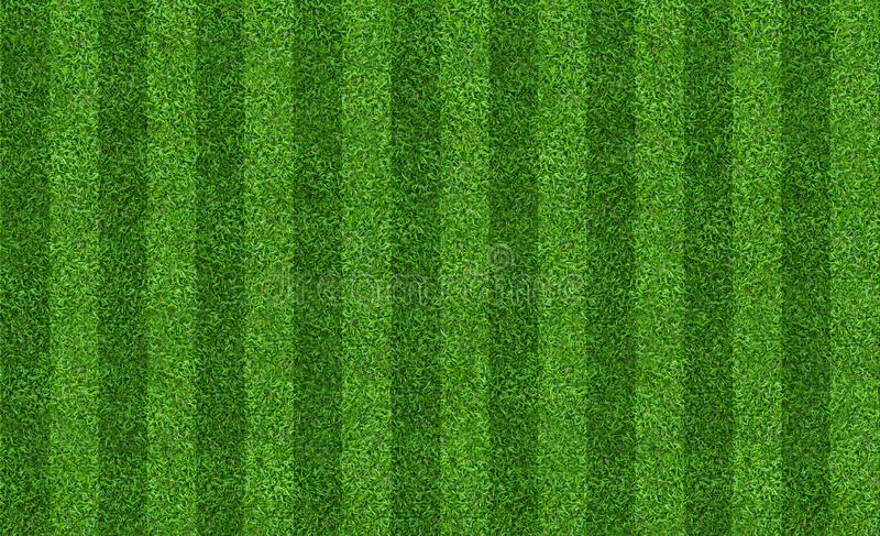 Green grass field background for soccer and football sports. Green lawn pattern and texture background. Close-up. Image stock image