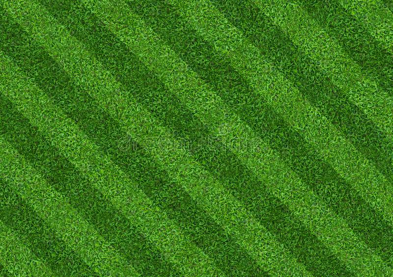 Green grass field background for soccer and football sports. Green lawn pattern and texture background. Close-up. Image stock photography