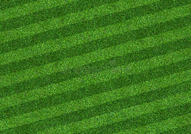 Green grass field background for soccer and football sports. Green lawn pattern and texture background. Close-up. Image stock photos