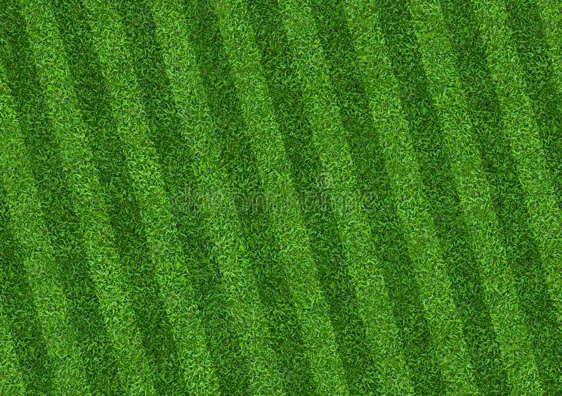 Green grass field background for soccer and football sports. Green lawn pattern and texture background. Close-up royalty free illustration