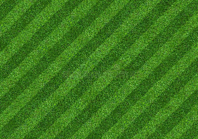 Green grass field background for soccer and football sports. Green lawn pattern and texture background. Close-up vector illustration