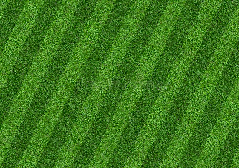 Green grass field background for soccer and football sports. Green lawn pattern and texture background. Close-up stock illustration